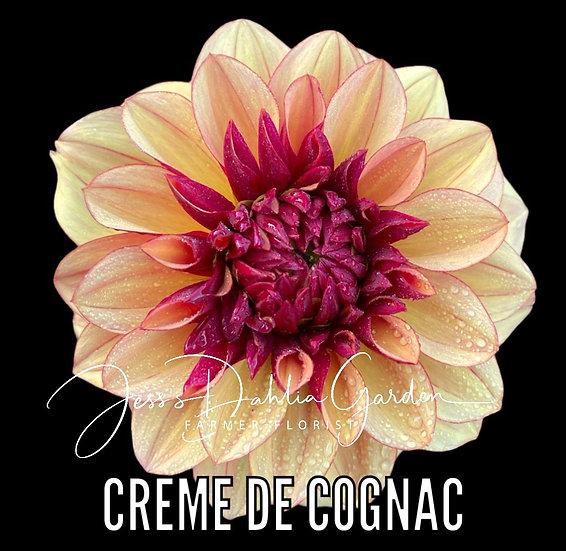 Creme de Cognac