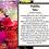 Thumbnail: DAHLIA - MIX