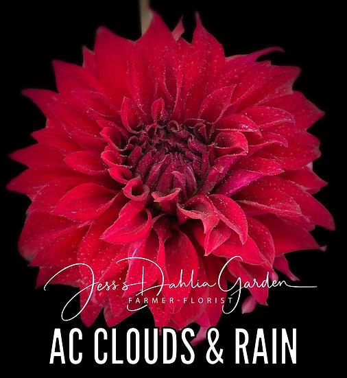 AC Clouds & Rain