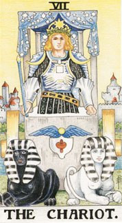 Sasha Graham's Tarot Card A Day Blog – The Chariot