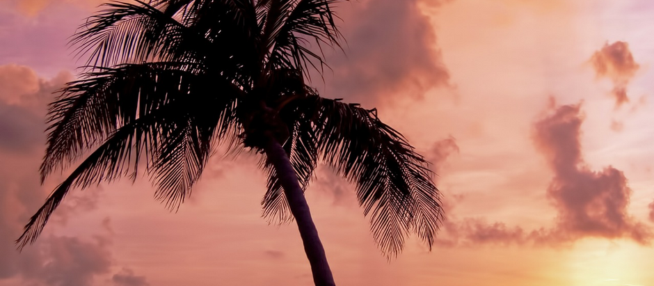 Tropical Tarot Magic Beachside Workshop & Drum Circle at Gulf Sands Beach Resort with Sasha Graham