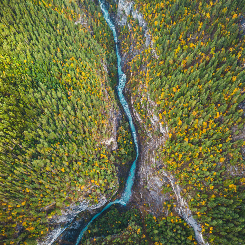 Prattle Creek