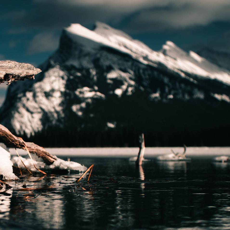 Winter Rundle