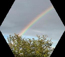 hexagon rainbow.png