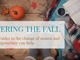 Entering the fall - What resides in the change of season and how acupuncture can help.