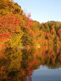 lac O'Malley 16