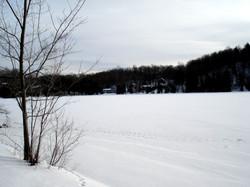 lac O'Malley 19