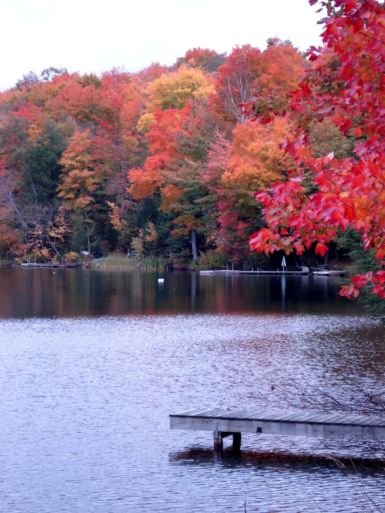 lac O'Malley 14
