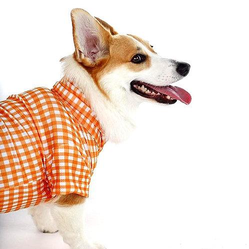 """Snugglie Pajamas """"Pumpkin"""""""
