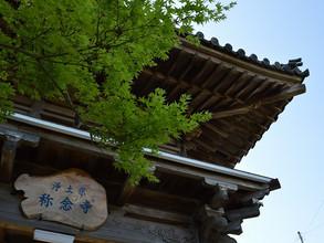 称念寺改修工事