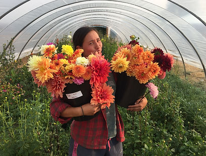 Bozeman Flowers