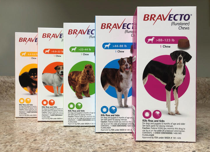 Bravecto Chewable