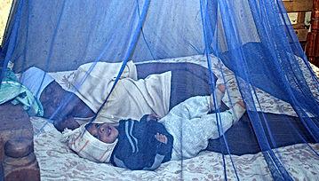 Mosquito Net .jpg