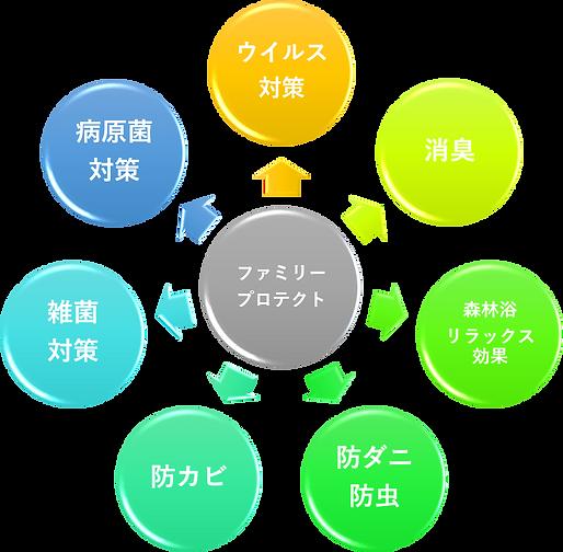 図1A.png
