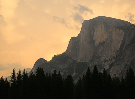 Yose's Guide to Yosemite