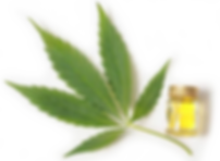cbd-oil-cannabis-leaf1.png