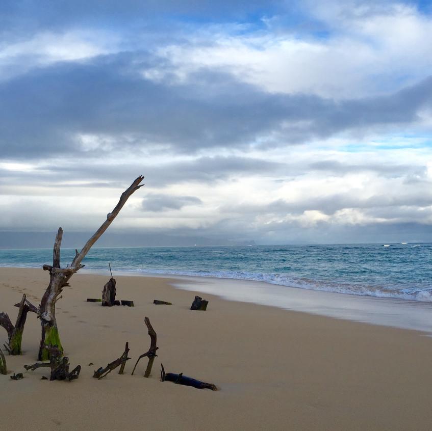 baldwin-beach