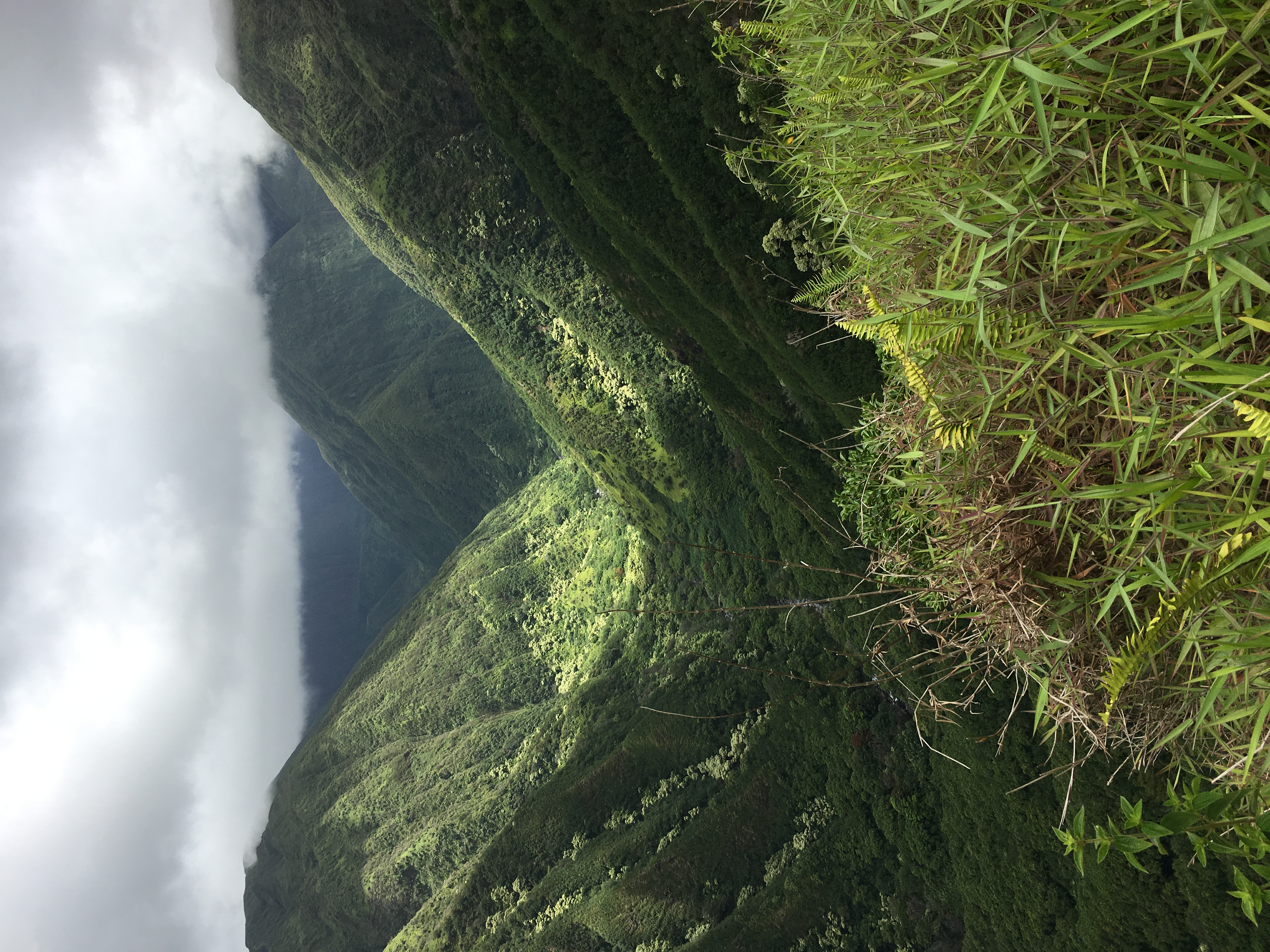 waihee-valley5