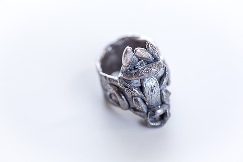 Ring Blackend Silver