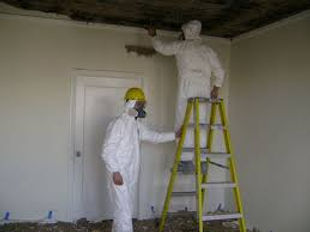 mold remidiators.jpg