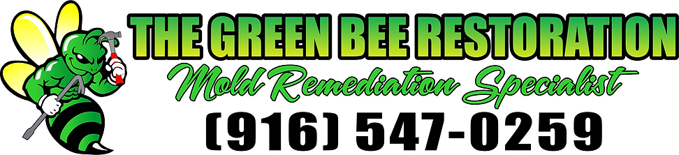 Green Bee new logo.png