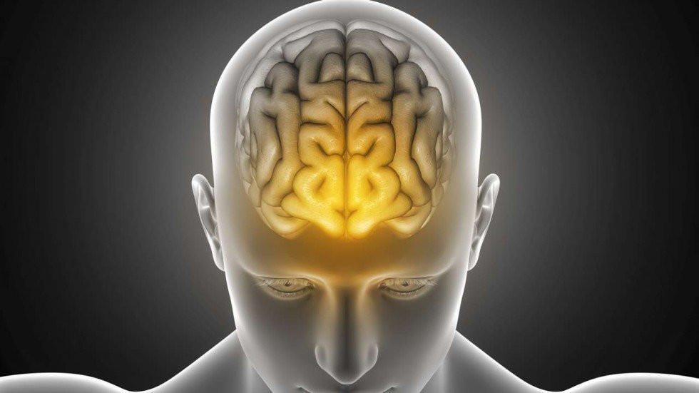 brain of a laptop