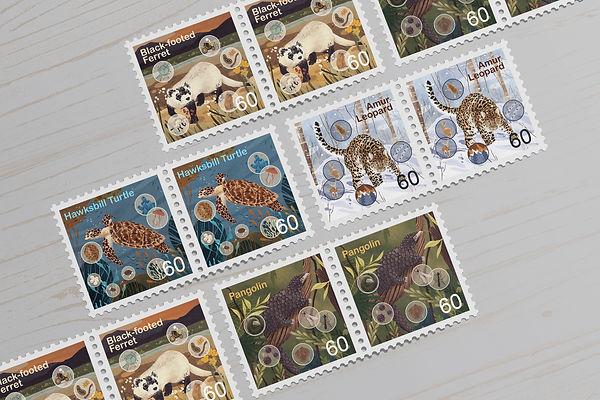 stamp mockup