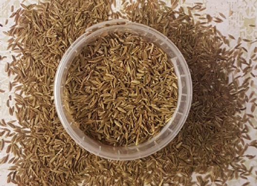 Cumin Seeds White 50g