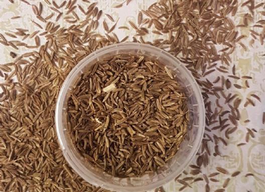 Caraway Seeds 50g