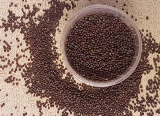 Mustard Seed Brown 60g