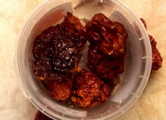 Trinidad Scorpion Chilli  ( Very Very  Hot ) 10g