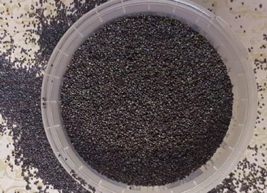 Poppy Seed Blue 50g