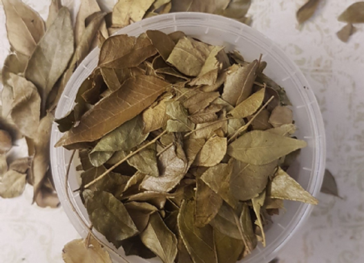 Curry Leaves 10g