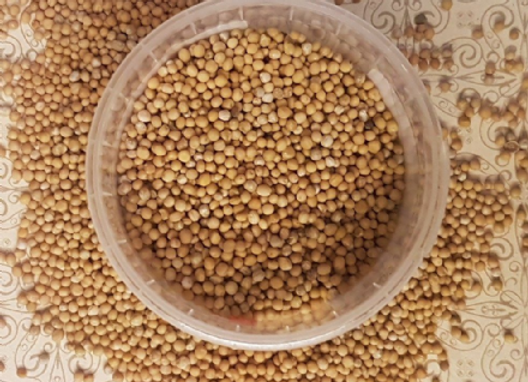Mustard Seeds Yellow 60g