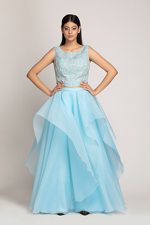 Organza layered  skirt and top