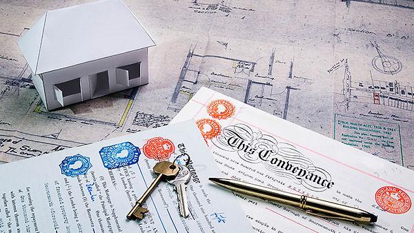 Land-Real-Estate (1).jpg