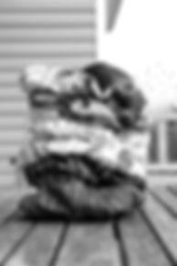 MD4A7763%20copy_edited.jpg