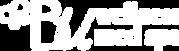 BU_Web_1811_Logo_Main_w.png
