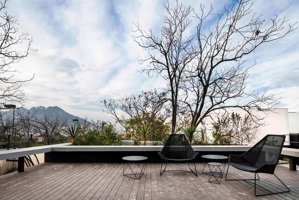 tescala | TEC | terraza de recámara principal + Cerro de la Silla