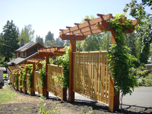 Custom Screen Cedar Fence w/ Trellis Top