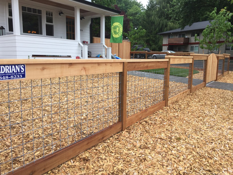 Picture Frame Cedar Fence w/ Wire Mesh