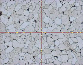 Axiovision & ImagePro Image Analysis