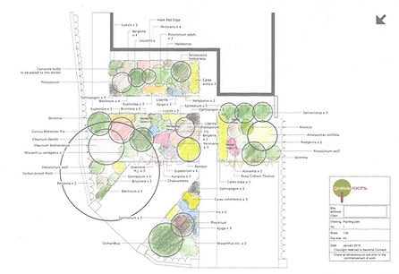 Front garden planting plan
