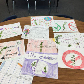 The School Garden Journal v.1, Issue 1