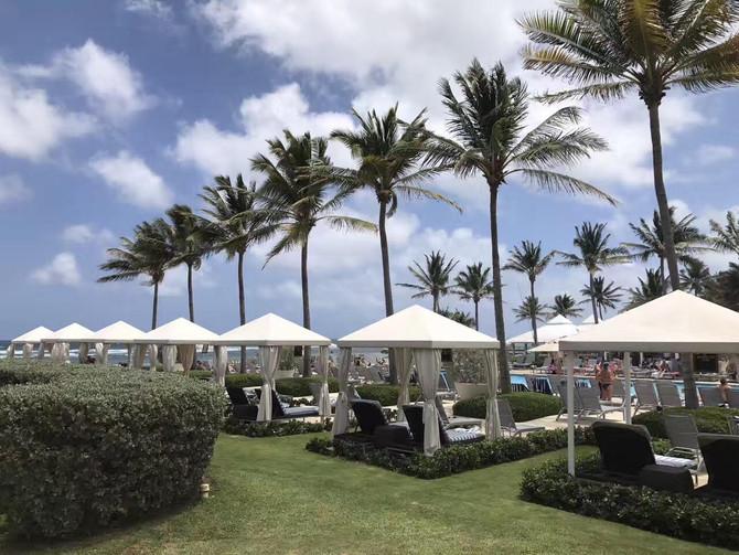 牙买加梦之旅旅游公司和希尔顿Hilton Rose Hall(蒙贝)合作