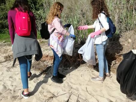 """""""Terra Jovem"""" - Limpeza da Praia de Albarquel"""