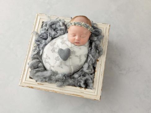 Warrnambool Newborn Photographer