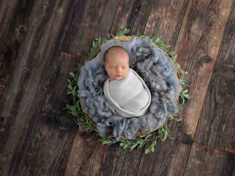 Port Fairy Newborn Photographer