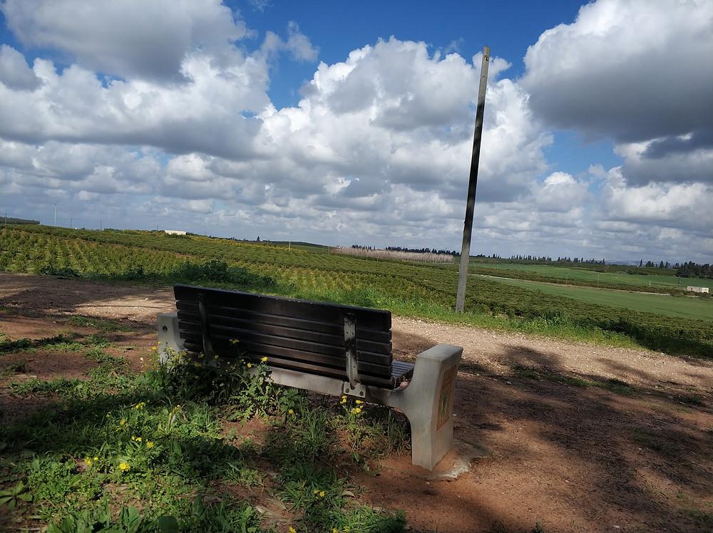 גינות בכפר סבא | ליאת קמחי