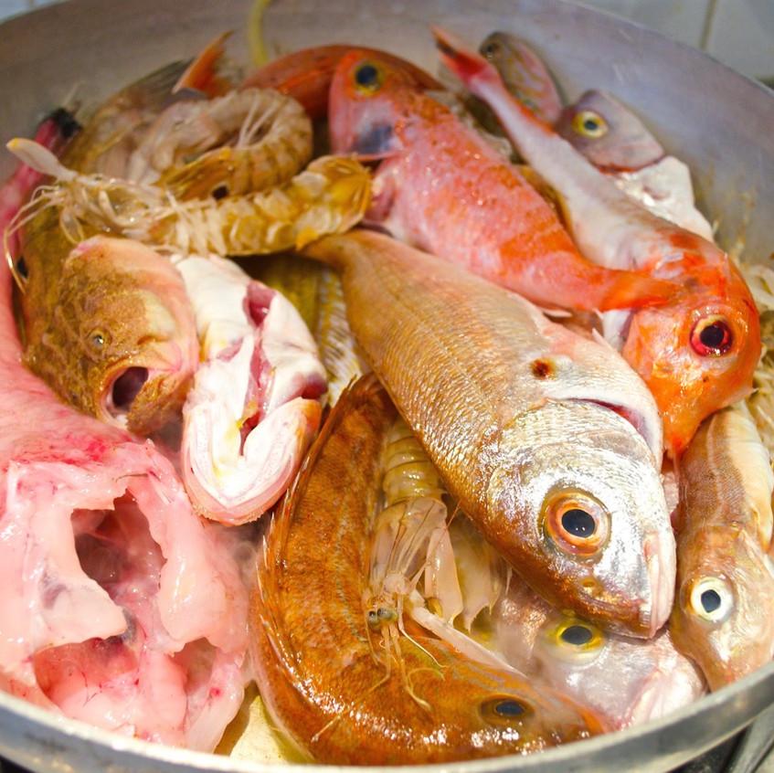 Zuppa di pesce #5